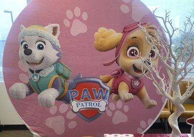Girl Paw Patrol